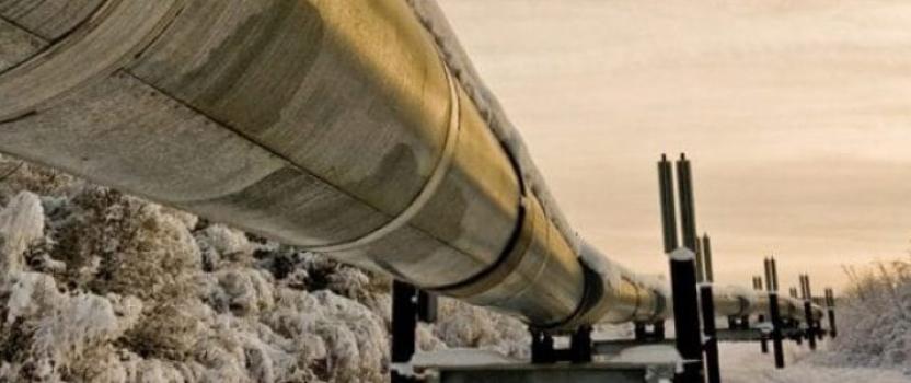 Industries agro-alimentaires et chimiques : commandes du carbone technique chez une entreprise experte
